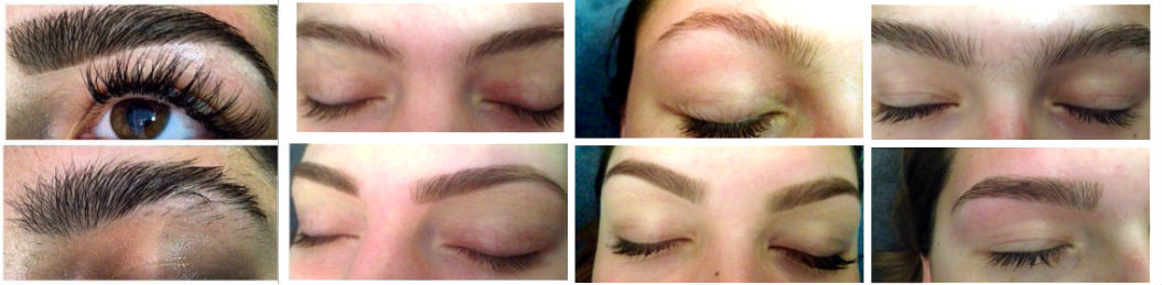 regular brow coll2