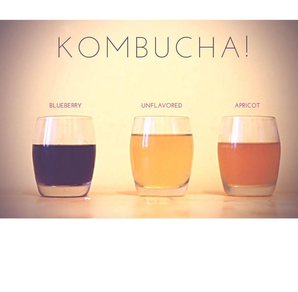 kombucha-3